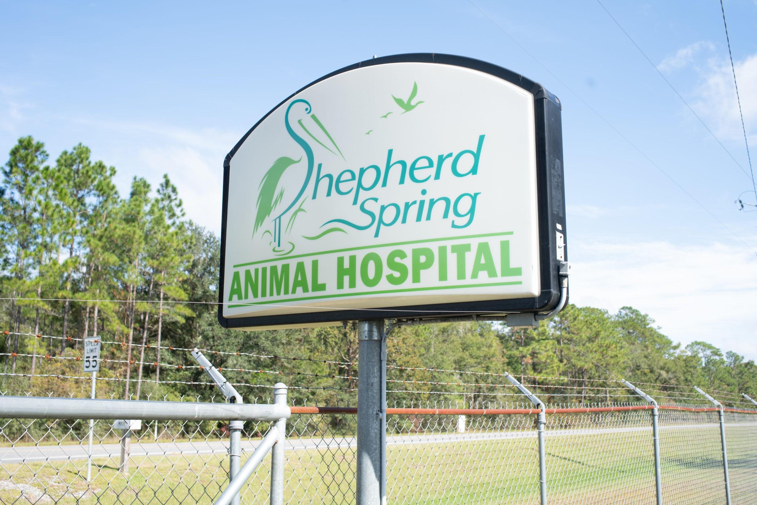 Animal Hospital Image